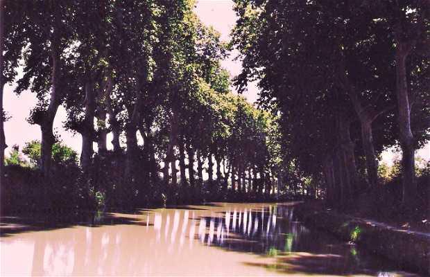 Turismo fluvial - El Canal de Midi
