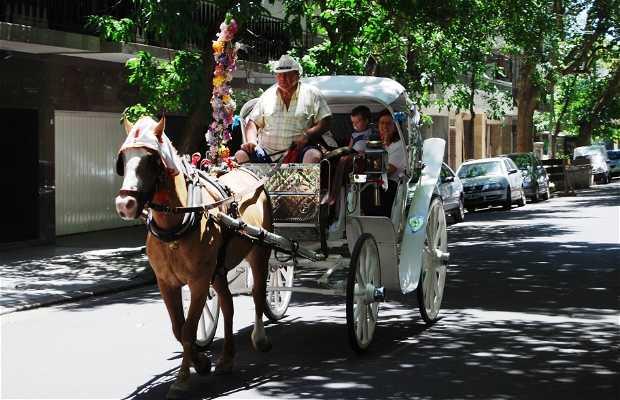 Mateos de Buenos Aires