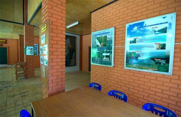 Visitor Center del Parque nacional Thale Ban National