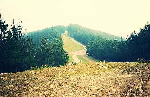 Ruta del Monte Alen