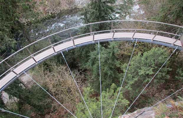 Parque del puente suspendido de Capilano