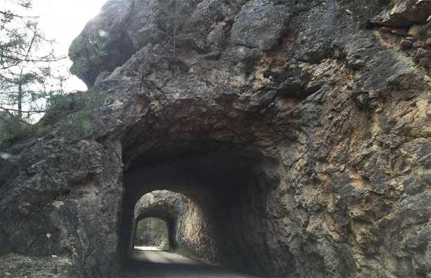 Camino del nacimiento del rio a las majadas