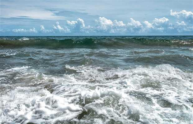 Playa de Osma