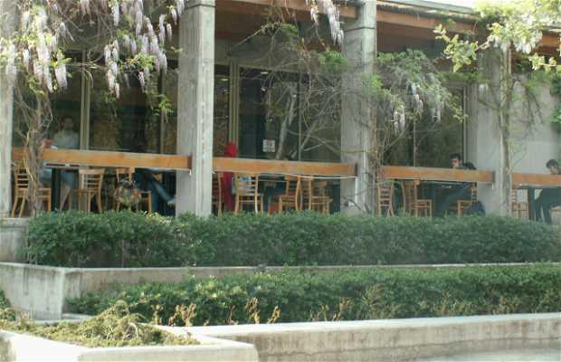 Café Literario Parque Bustamante