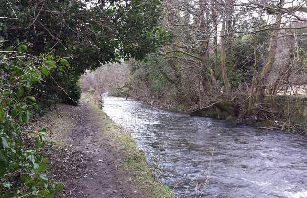 Paseo del río Bannock