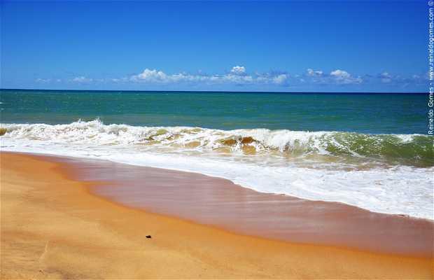Arakakai Beach