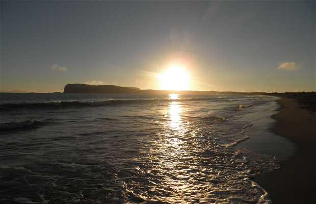 Puerto Godoy