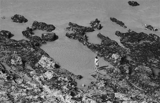 La digue de Dieppe