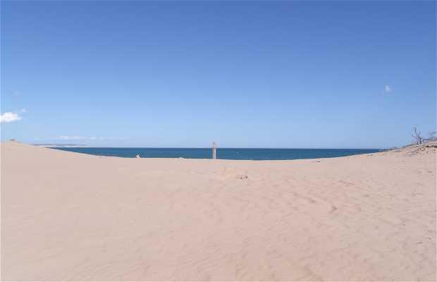 Dunes de Guardamar