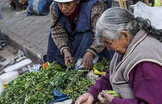 El Mercado de San Pedro