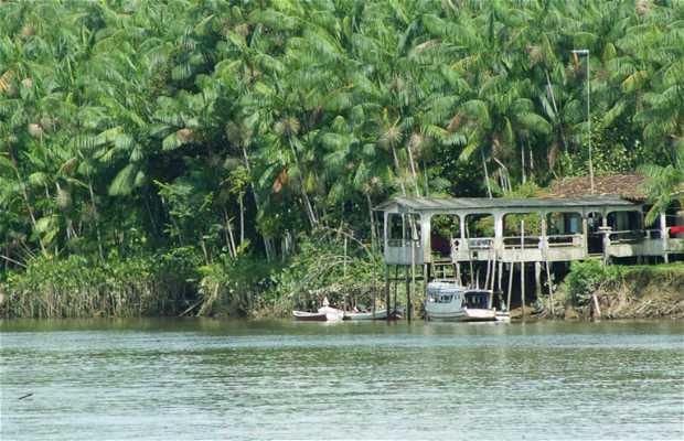 Maloca do Orlando - restaurante en el río