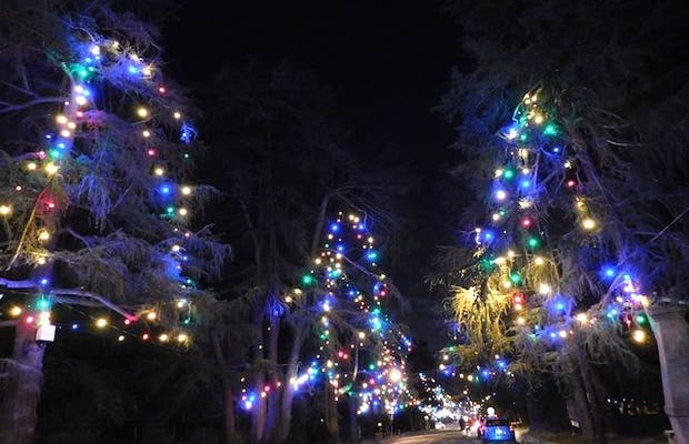 Christmas Tree Lane.Christmas Tree Lane In Altadena 1 Reviews And 1 Photos