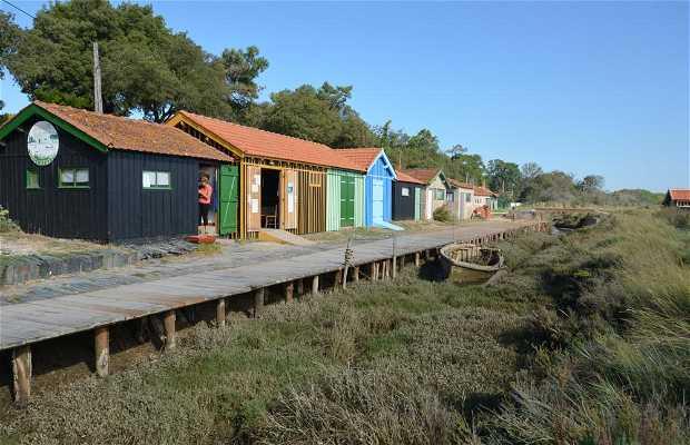 Sitio de Acuicultura de ostras y natural de Fort Royer