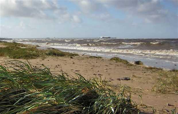 Playa de Southport