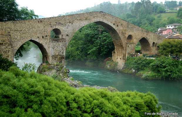 Classic racer Lagos de Covadonga - Asturias