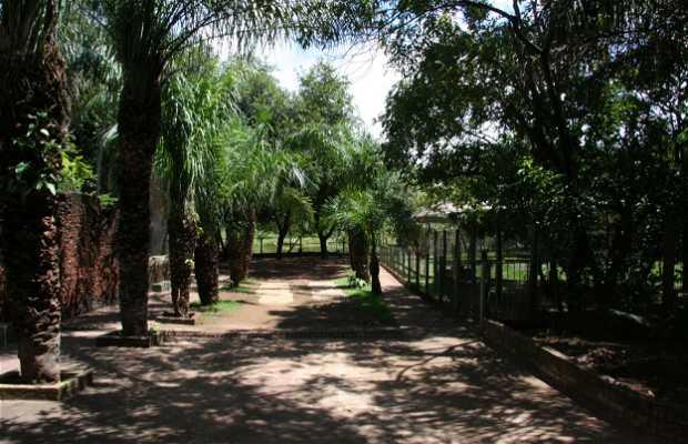 Universidade Federal do Mato Grosso - UFMT
