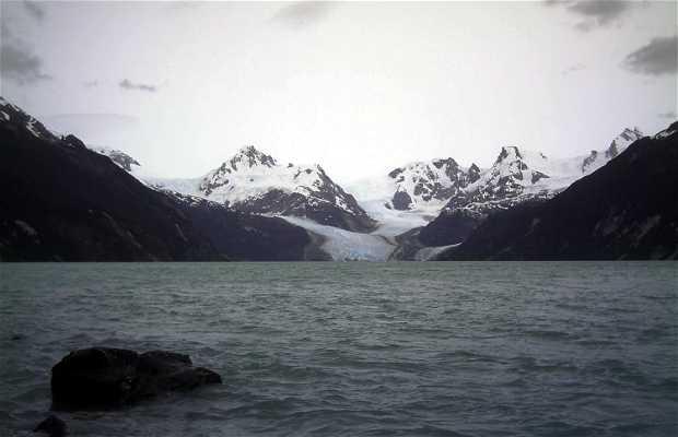 Trekking Glaciar Los Leones