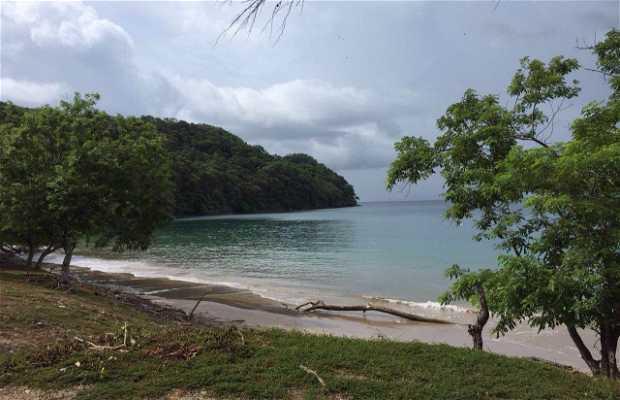 Playa puerto viejo guanacaste