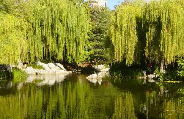 Jardim Chinês da Amizade