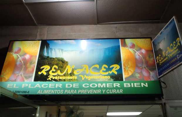 Restaurante Renacer Vegetariano
