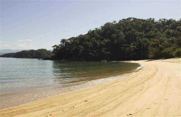 Playa de Santana