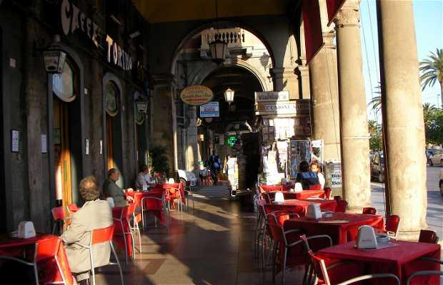 Nuovo Caffe Torino
