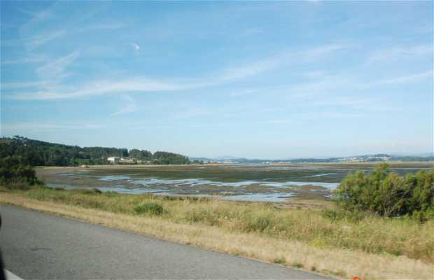O Bao Marsh