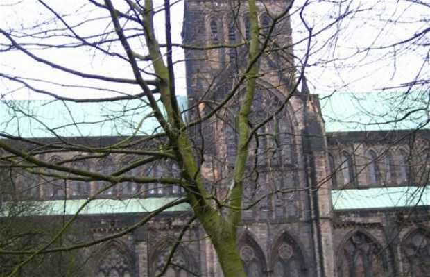 Cathédrale Saint-Mungo de Glasgow