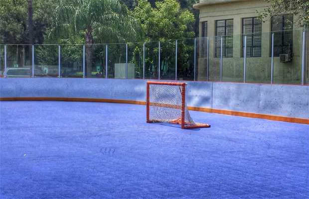 Pista de hockey