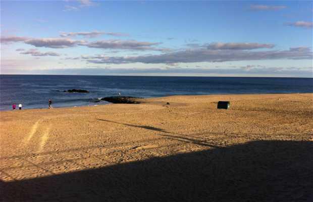 Playa de Long Brach