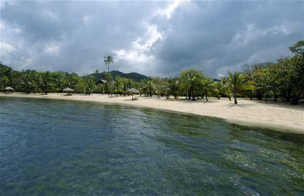 Playa de Palmetto Bay