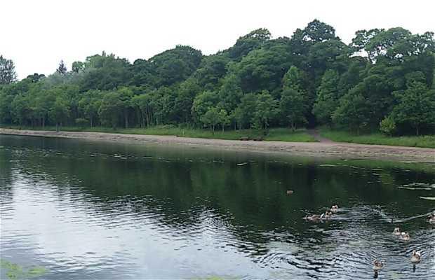 Lago Strathclyde