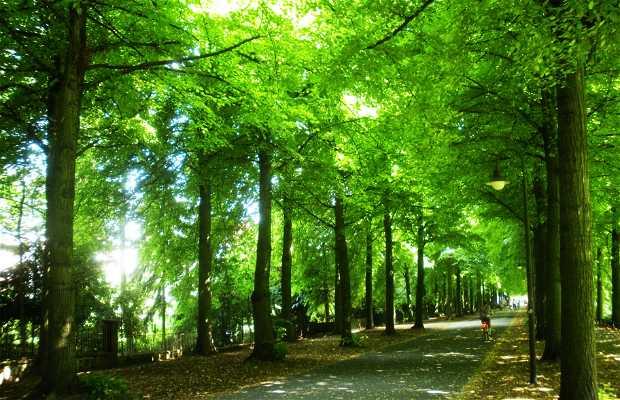 La Promenade di Münster