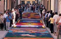 Oficina de Turismo de la Mancomunidad Sierra del Segura