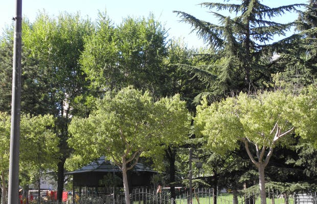 Sant Jordi Park
