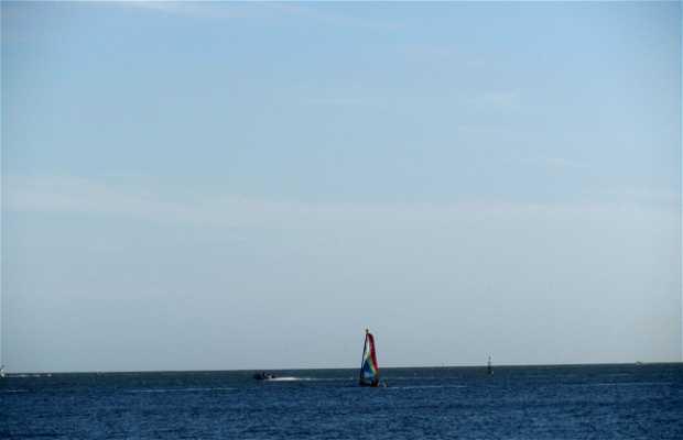 Playa Cantegril