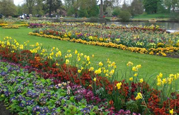 Jardins Carlton