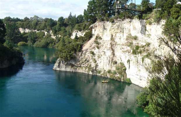Bungy sobre el río Waikato