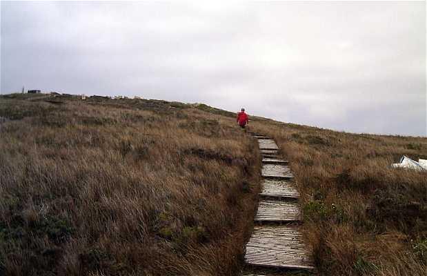 Caminar por el Cabo de Hornos