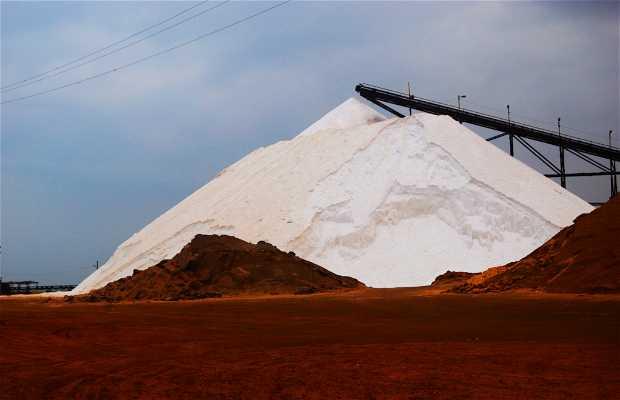 Pilones de sal en el puerto de Manaure