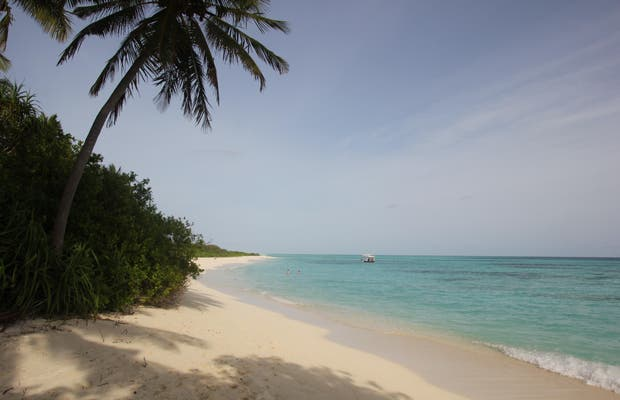 Dhipdoo island