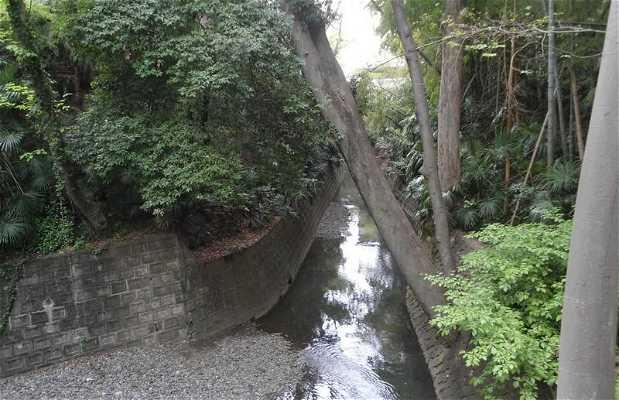 Parque Tagamawa de Todoroki