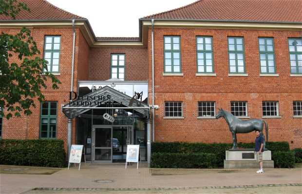 Museo del caballo