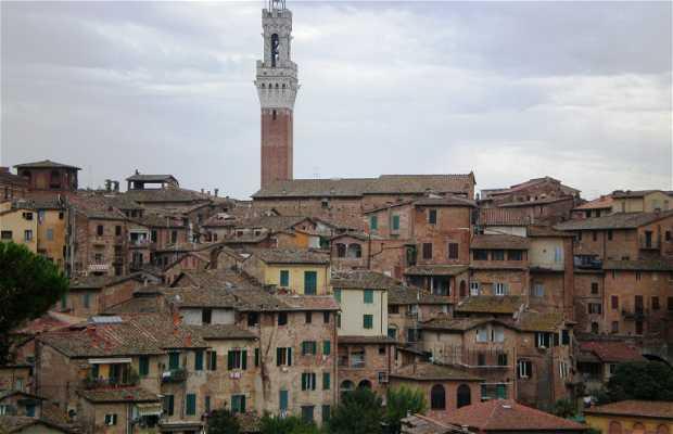 Vista de Siena desde Via Camporegio