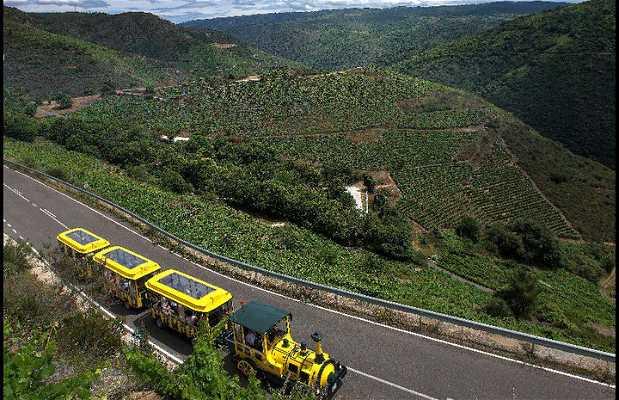 Tren Turístico Aba Sacra