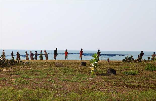 Los pescadores de cerco de playa