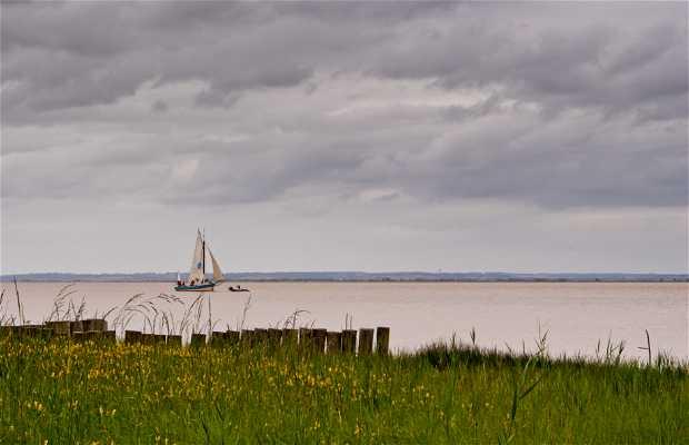 Río Gironde