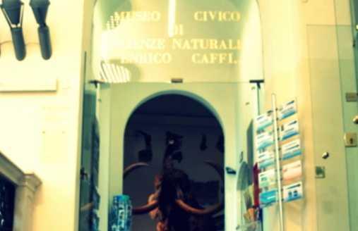 Caffi Museu de Ciências Naturais