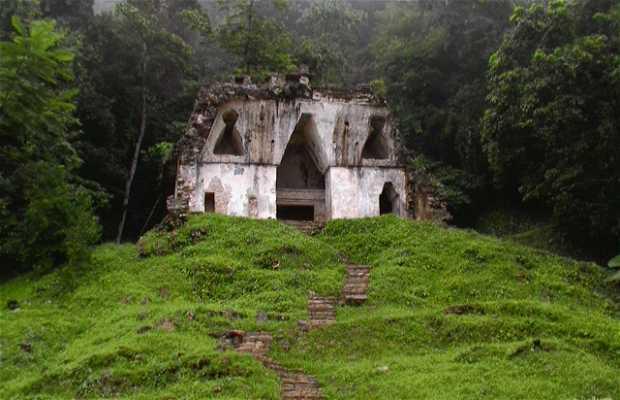 Foresta Lacandona