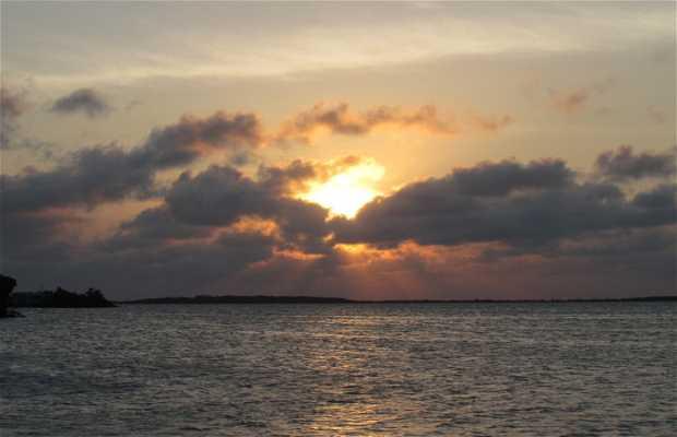 San Pedro island